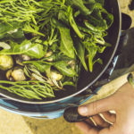 Cooking wild cockles and samphire on the beach in Cornwall